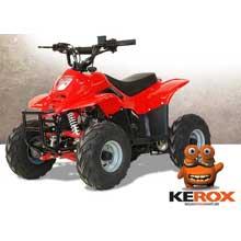 quad kerox puma 110