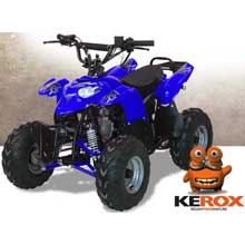 quad kerox raptor 110